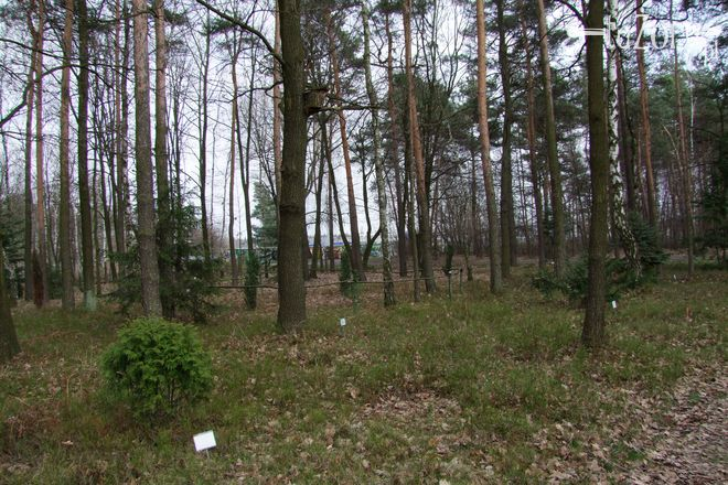 Park Piaskownia jest najlepszym miejscem na wiosenne spacery
