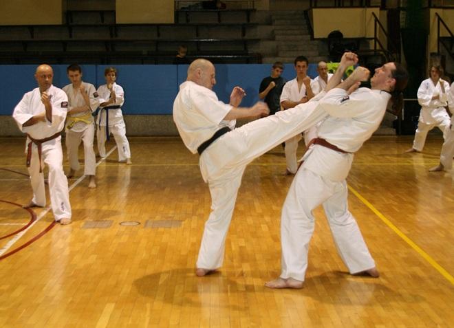 W sobotę 28 listopada w żorskiej hali odbędzie się I edycja Sari Cup - żorskiego turnieju karate kyokushin
